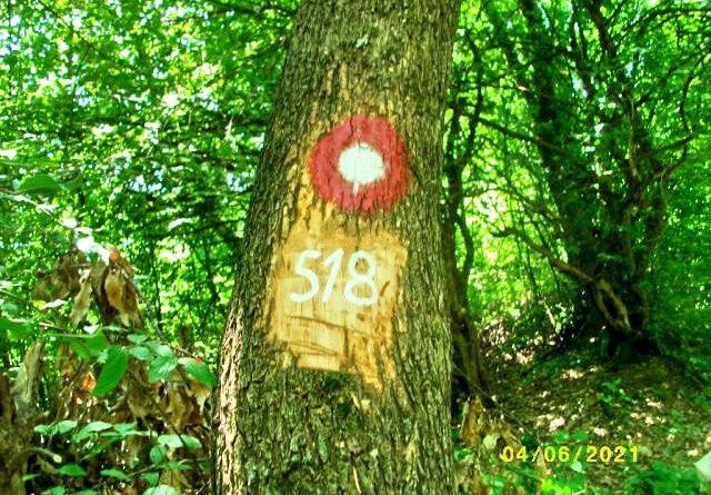 Markiranje planinarskog puta 518 - G. Vrhovci - C. Vrhovci